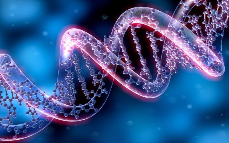 Il rifiuto ingiustificato a sottoporsi a CTU genetica è sufficiente a fondare il convincimento del giudice sulla paternità