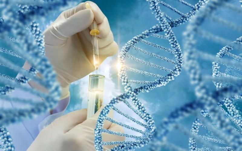 Il rifiuto di sottoporsi al test del DNA fa presumere la paternità